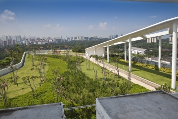 The Green Platform of the Solaris Tower, Singapore